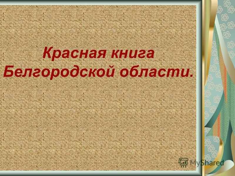 Красная книга Белгородской области.