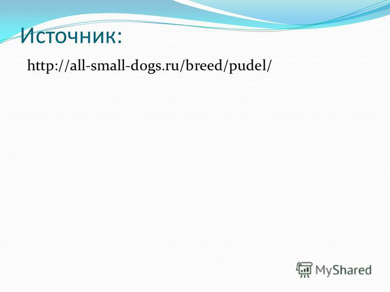 Источник: http://all-small-dogs.ru/breed/pudel/
