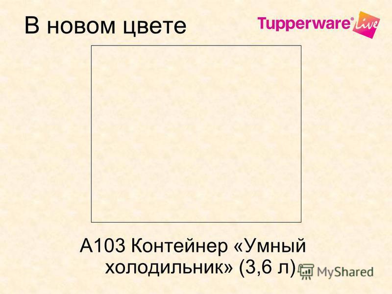 В новом цвете А103 Контейнер «Умный холодильник» (3,6 л)