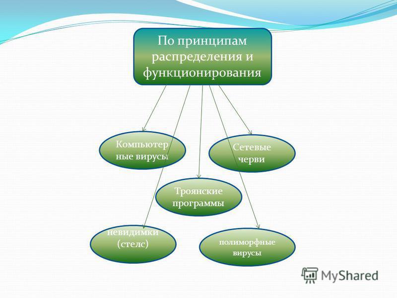 По принципам распределения и функционирования Компьютер ные вирусы Троянские программы Сетевые черви невидимки (стелс) полиморфные вирусы