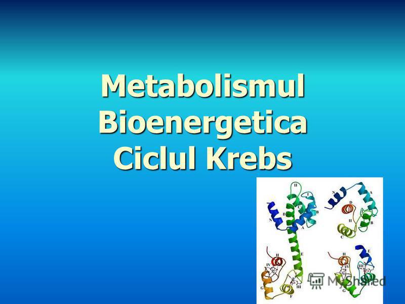 Metabolismul Bioenergetica Ciclul Krebs