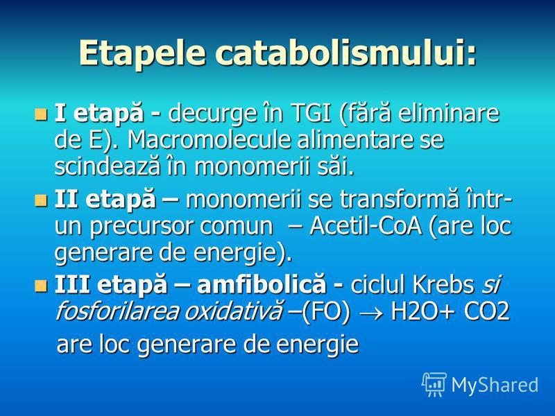 Etapele catabolismului: I etapă - decurge în TGI (fără eliminare de E). Macromolecule alimentare se scindează în monomerii săi. I etapă - decurge în TGI (fără eliminare de E). Macromolecule alimentare se scindează în monomerii săi. II etapă – monomer
