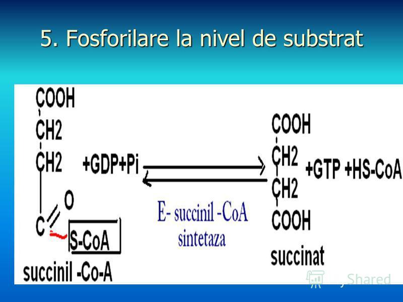 5. Fosforilare la nivel de substrat
