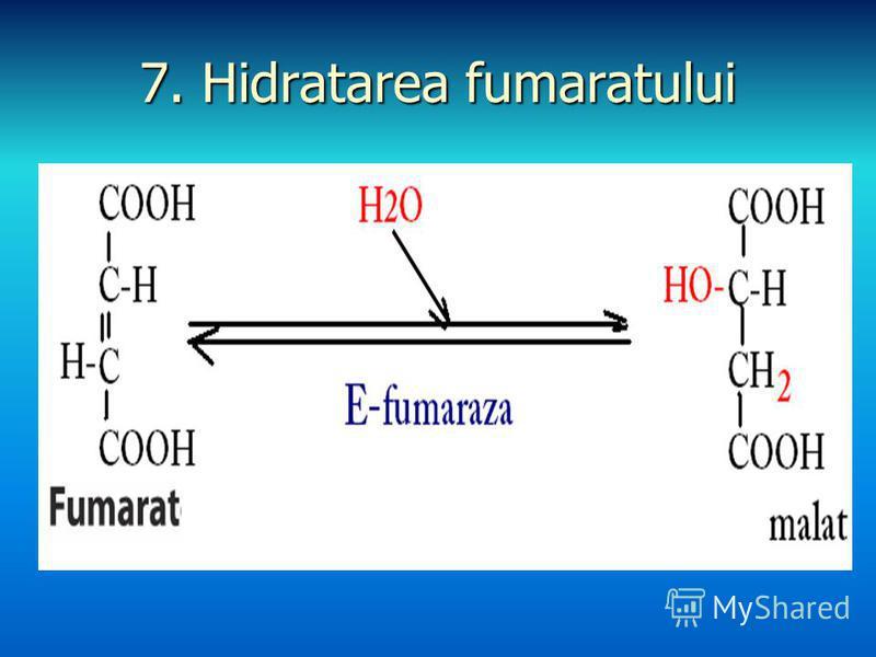 7. Hidratarea fumaratului
