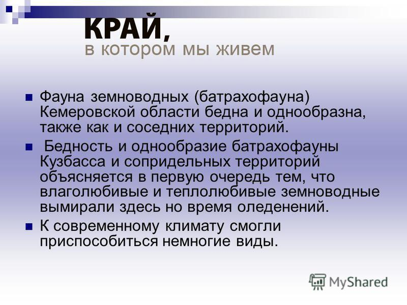 Фауна земноводных (батрахофауна) Кемеровской области бедна и однообразна, также как и соседних территорий. Бедность и однообразие батрахофауны Кузбасса и сопредельных территорий объясняется в первую очередь тем, что влаголюбивые и теплолюбивые земнов