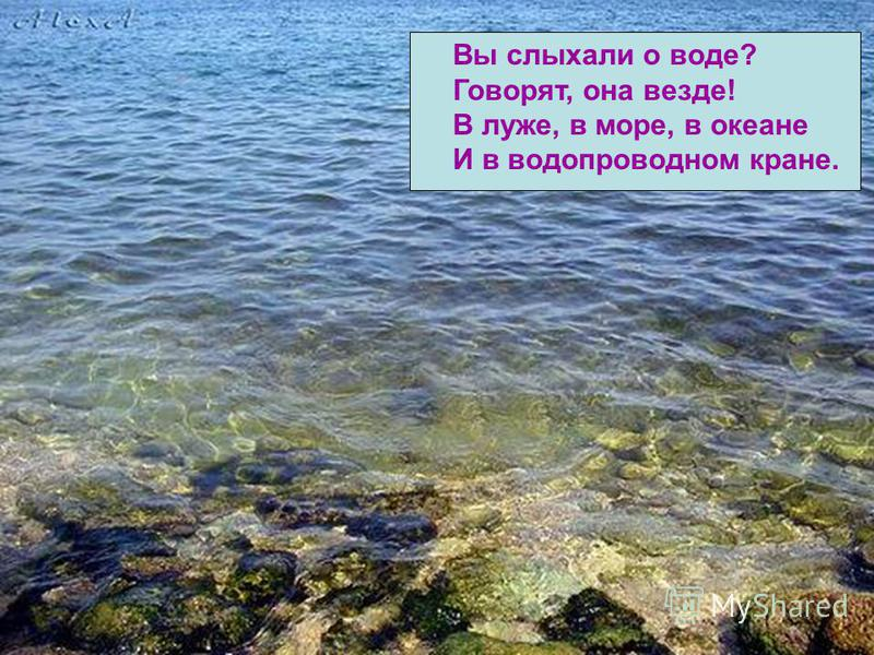 Вы слыхали о воде? Говорят, она везде! В луже, в море, в океане И в водопроводном кране.