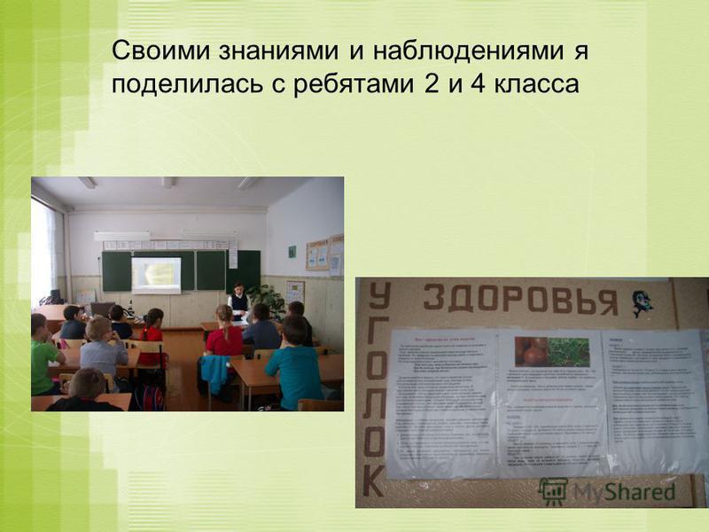 Своими знаниями и наблюдениями я поделилась с ребятами 2 и 4 класса