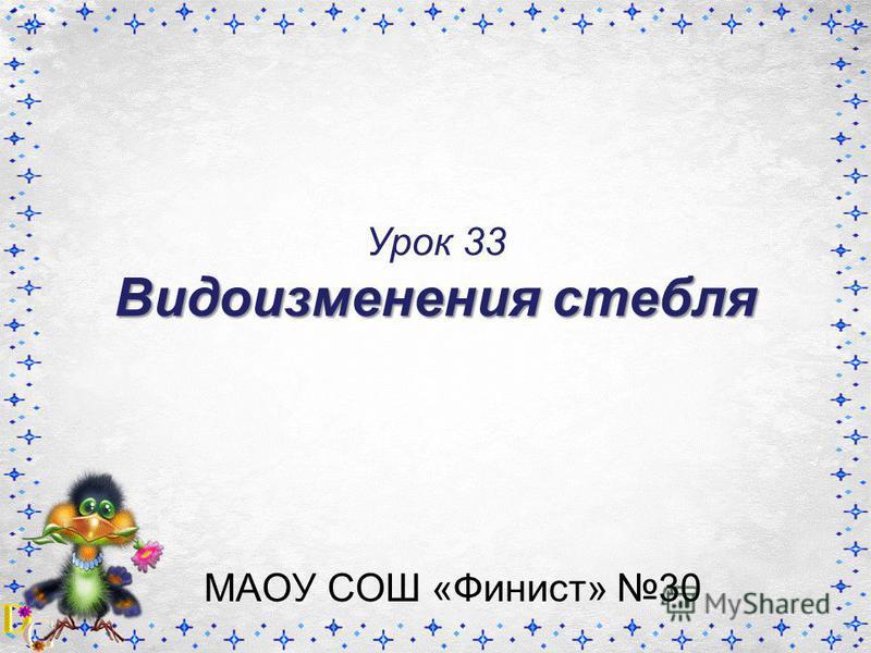 Видоизменения стебля Урок 33 Видоизменения стебля МАОУ СОШ «Финист» 30