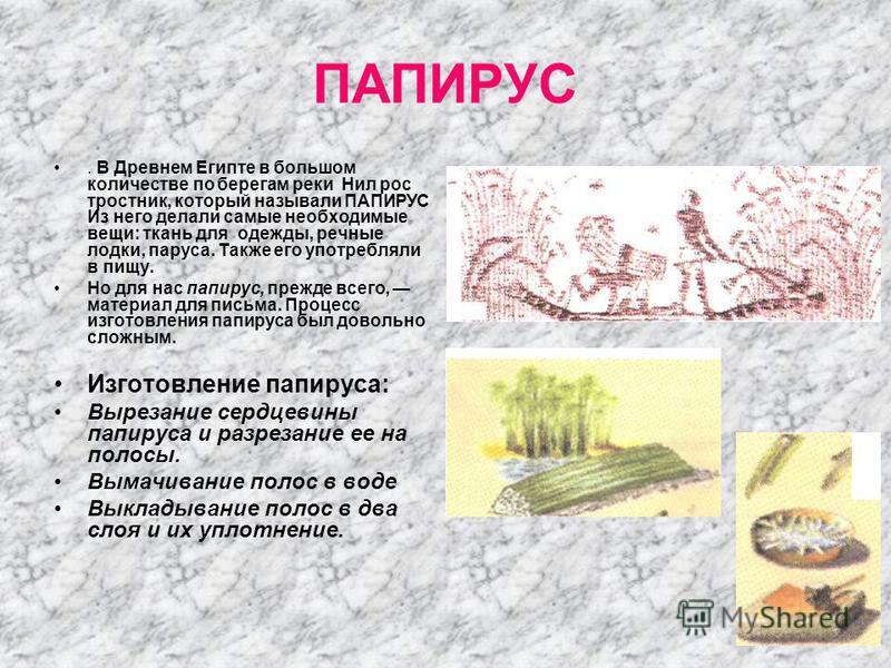 ПАПИРУС. В Древнем Египте в большом количестве по берегам реки Нил рос тростник, который называли ПАПИРУС Из него делали самые необходимые вещи: ткань для одежды, речные лодки, паруса. Также его употребляли в пищу. Но для нас папирус, прежде всего, м