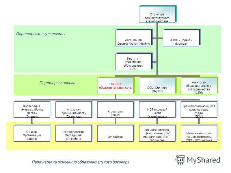 Партнеры на основании образовательного договора Партнеры-консультанты Партнеры-коллеги