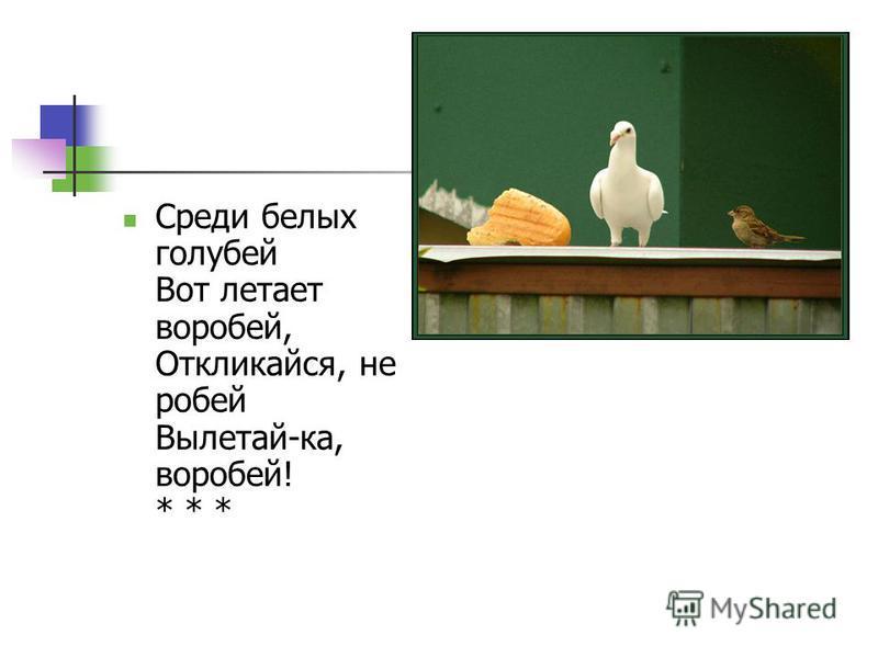 Среди белых голубей Вот летает воробей, Откликайся, не робей Вылетай-ка, воробей! * * *