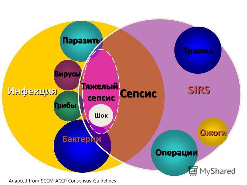 Инфекция Паразиты Вирусы Грибы Бактерии Травма Ожоги Сепсис SIRS Тяжелыйсепсис Adapted from SCCM ACCP Consensus Guidelines Шок Операции