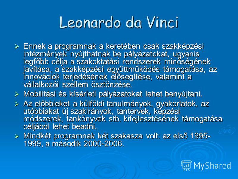 Leonardo da Vinci Ennek a programnak a keretében csak szakképzési intézmények nyújthatnak be pályázatokat, ugyanis legfőbb célja a szakoktatási rendszerek minőségének javítása, a szakképzési együttműködés támogatása, az innovációk terjedésének előseg