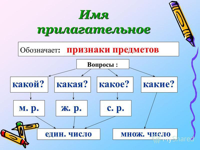 Имя прилагательное какой? м. р. Вопросы : Обозначает: признаки предметов какая?какое?какие? ж. р.с. р. един. числом нож. число