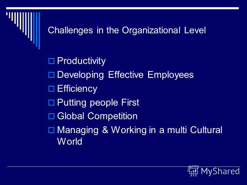 Challenges in the Organizational Level Productivity Developing Effective Employees Efficiency Putting people First Global Competition Managing & Working in a multi Cultural World