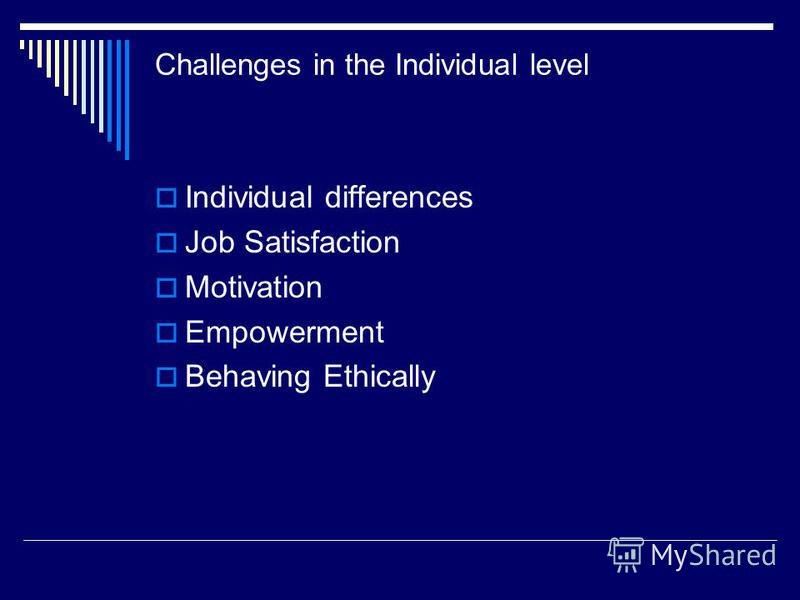 Challenges in the Individual level Individual differences Job Satisfaction Motivation Empowerment Behaving Ethically