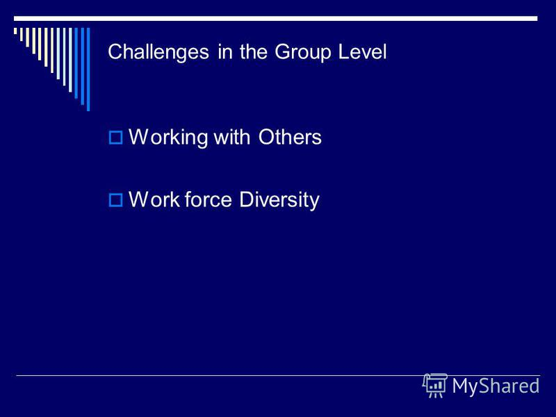Challenges in the Group Level Working with Others Work force Diversity