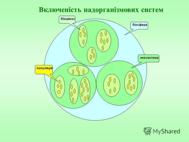 екосистема біоценоз біосфера популяція Включеність надорганізмових систем