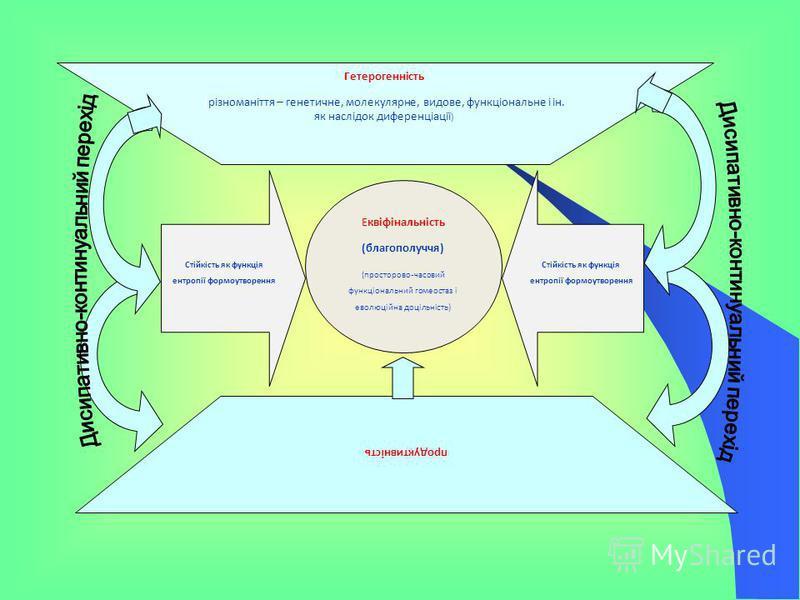 Гетерогенність (різноманіття генетичне, молекулярне, видове, функціональне і ін. як наслідок диференціації ) продуктивність Еквіфінальність (благополуччя) (просторово - часовий функціональний гомеостаз і еволюційна доцільність) Стійкість як функція е