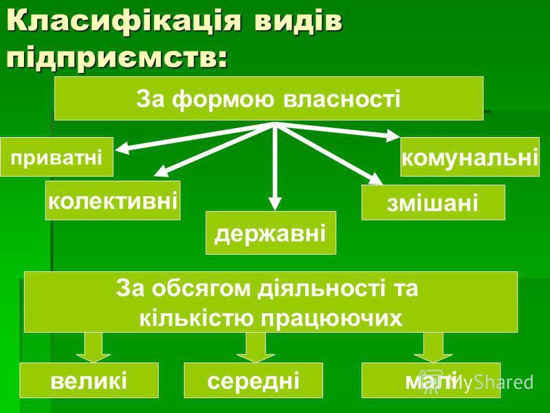 Класифікація видів підприємств: За формою власності приватні колективні комунальні державні змішані За обсягом діяльності та кількістю працюючих великісередні малі