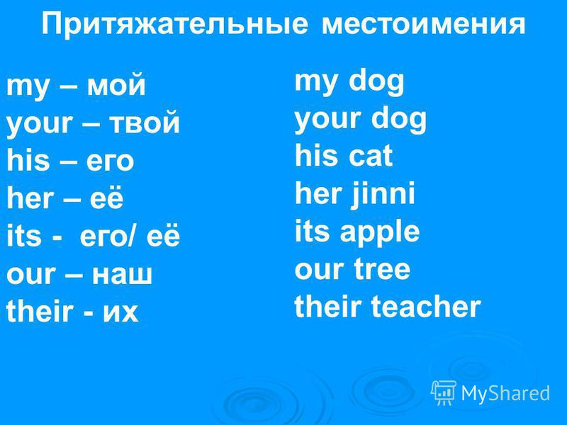 Притяжательные местоимения my – мой your – твой his – его her – её its - его/ её our – наш their - их my dog your dog his cat her jinni its apple our tree their teacher