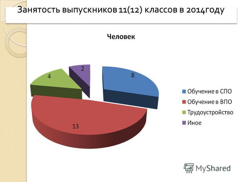 Занятость выпускников 11(12) классов в 2014 году