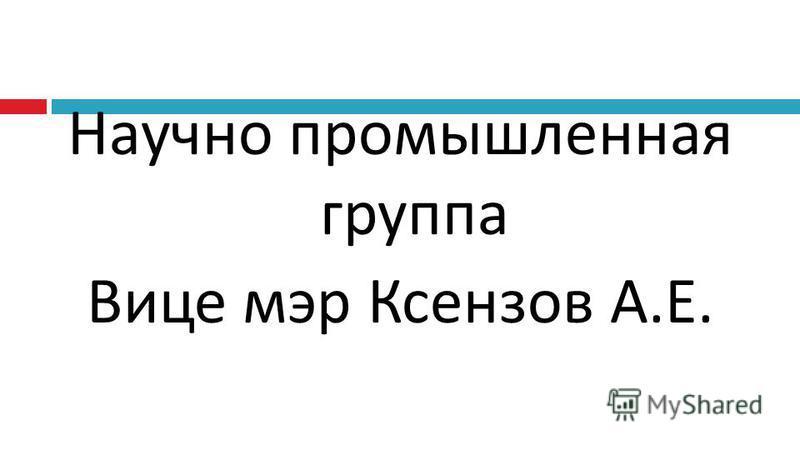 Научно промышленная группа Вице мэр Ксензов А.Е.