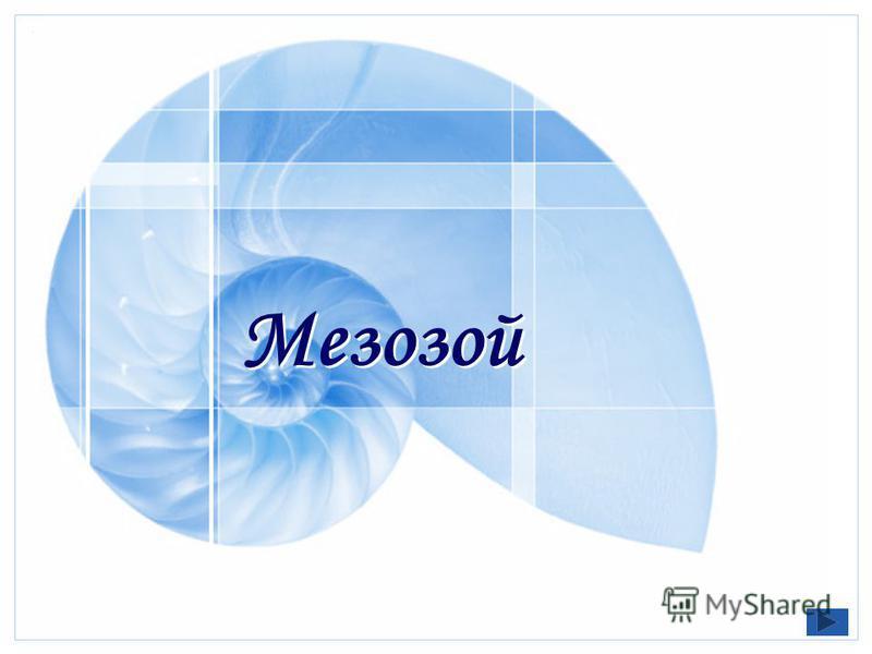 Мезозой