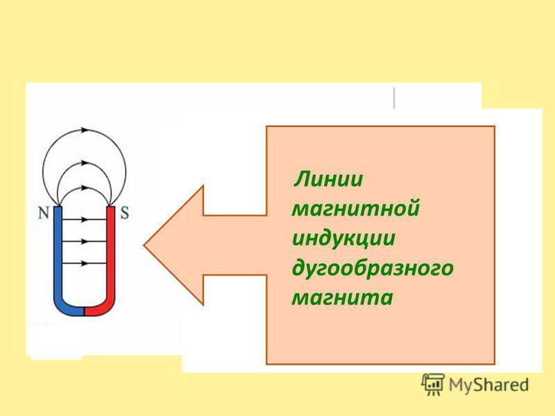 Линии магнитной индукции дугообразного магнита