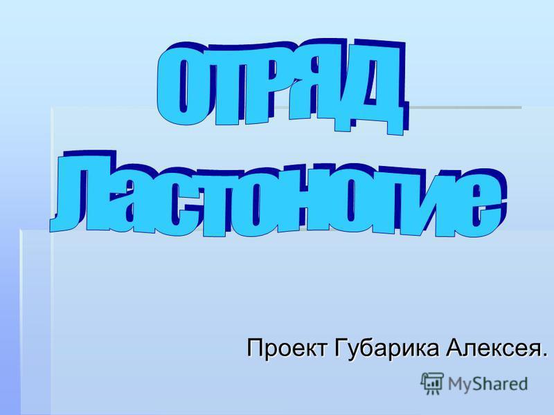 Проект Губарика Алексея.