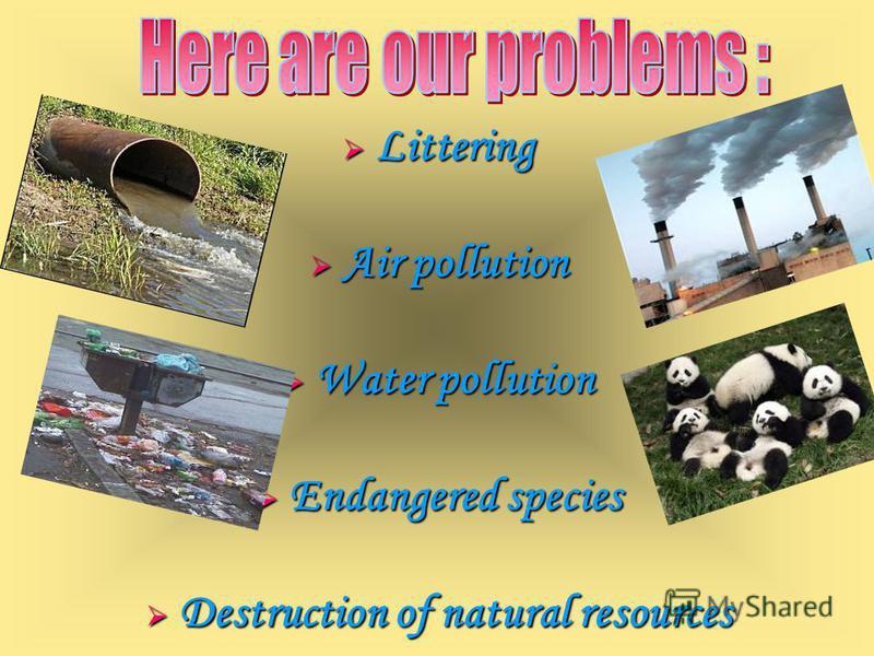 Littering Littering Air pollution Air pollution Water pollution Water pollution Endangered species Endangered species Destruction of natural resources Destruction of natural resources
