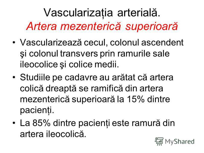 Vascularizaţia arterială. Artera mezenterică superioară Vascularizează cecul, colonul ascendent şi colonul transvers prin ramurile sale ileocolice şi colice medii. Studiile pe cadavre au arătat că artera colică dreaptă se ramifică din artera mezenter