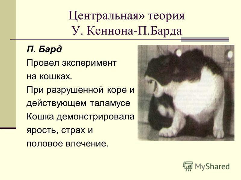 Центральная» теория У. Кеннона-П.Барда П. Бард Провел эксперимент на кошках. При разрушенной коре и действующем таламусе Кошка демонстрировала ярость, страх и половое влечение.