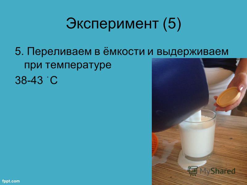 Эксперимент (5) 5. Переливаем в ёмкости и выдерживаем при температуре 38-43 ֯ С