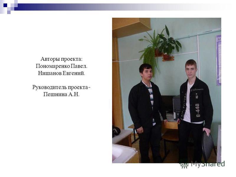 Авторы проекта : Пономаренко Павел, Нишанов Евгений. Руководитель проекта - Пешнина А. Н.