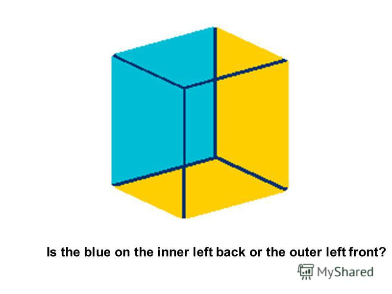 Is the blue on the inner left back or the outer left front?