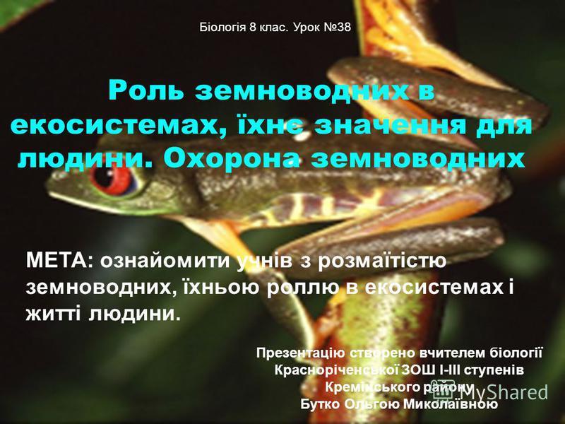 Роль земноводних в екосистемах, їхнє значення для людини. Охорона земноводних МЕТА: ознайомити учнів з розмаїтістю земноводних, їхньою роллю в екосистемах і житті людини. Біологія 8 клас. Урок 38 Презентацію створено вчителем біології Красноріченсько