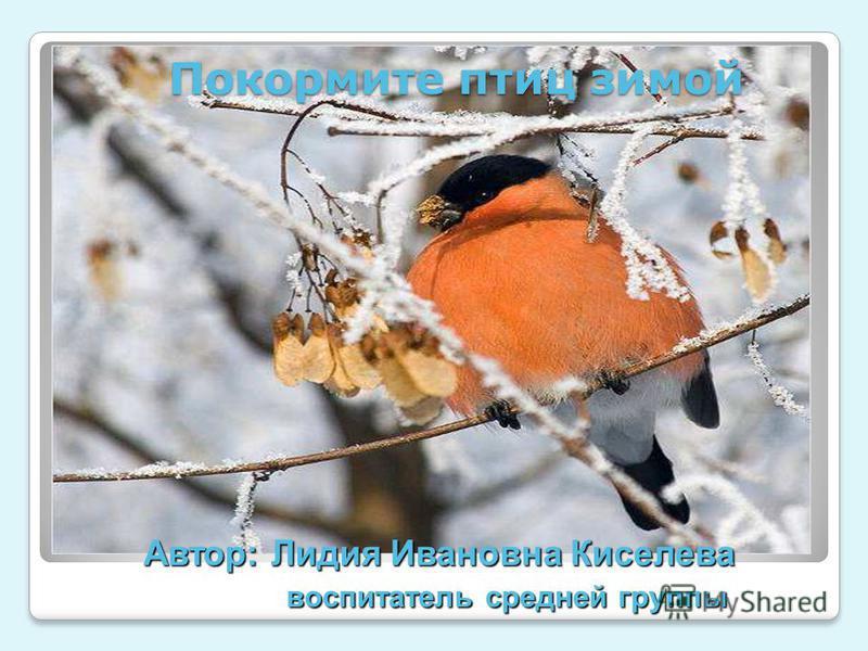 Автор: Лидия Ивановна Киселева воспитатель средней группы Покормите птиц зимой
