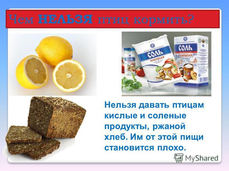 Чем НЕЛЬЗЯ птиц кормить? Нельзя давать птицам кислые и соленые продукты, ржаной хлеб. Им от этой пищи становится плохо.