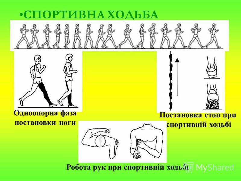 СПОРТИВНА ХОДЬБА Одноопорна фаза постановки ноги Постановка стоп при спортивній ходьбі Робота рук при спортивній ходьбі