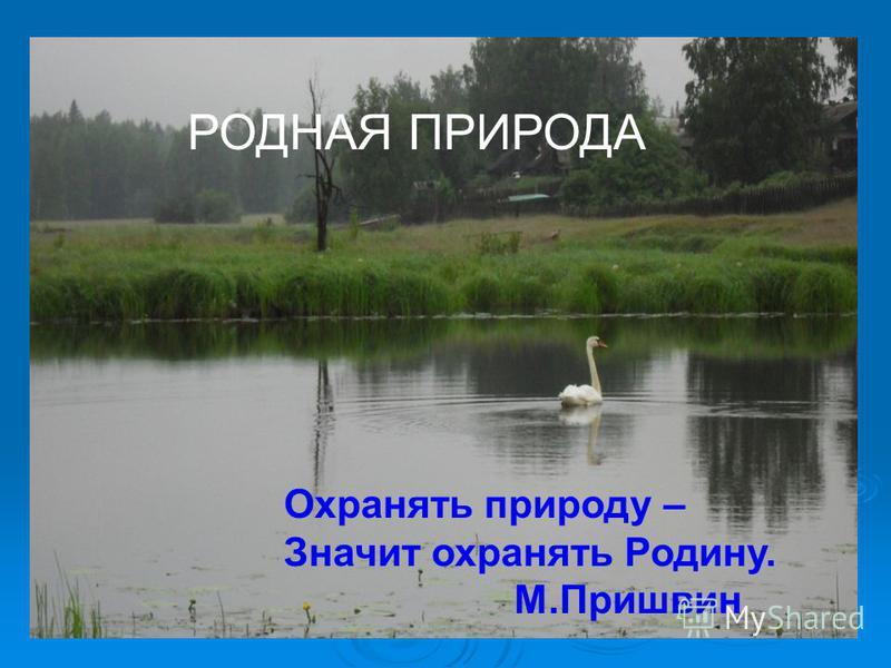 РОДНАЯ ПРИРОДА Охранять природу – Значит охранять Родину. М.Пришвин