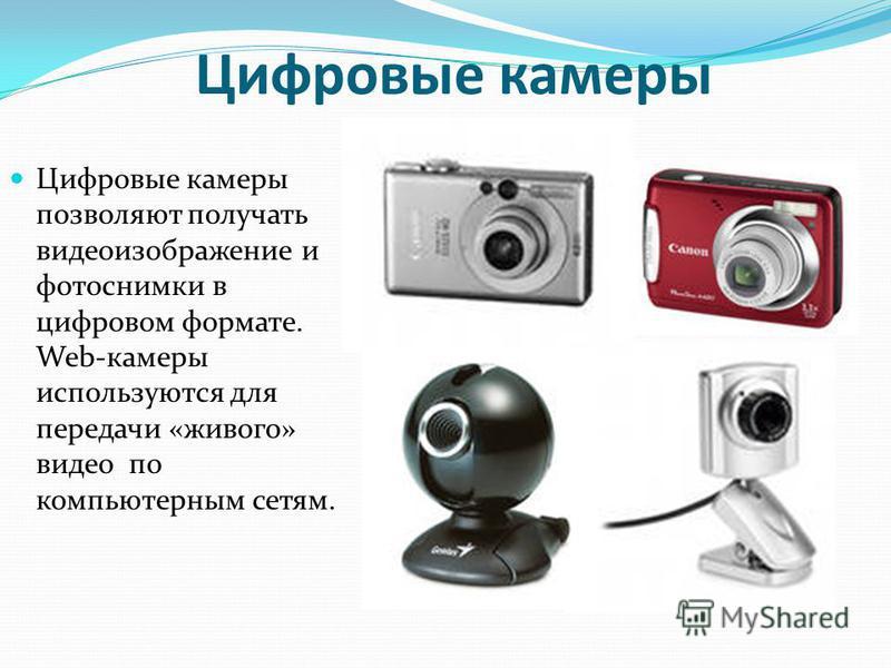Цифровые камеры Цифровые камеры позволяют получать видеоизображение и фотоснимки в цифровом формате. Web-камеры используются для передачи «живого» видео по компьютерным сетям.