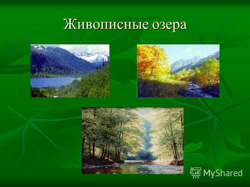 Живописные озера
