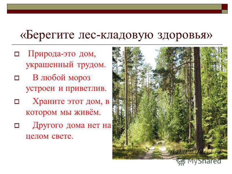 «Берегите лес-кладовую здоровья» Природа-это дом, украшенный трудом. В любой мороз устроен и приветлив. Храните этот дом, в котором мы живём. Другого дома нет на целом свете.