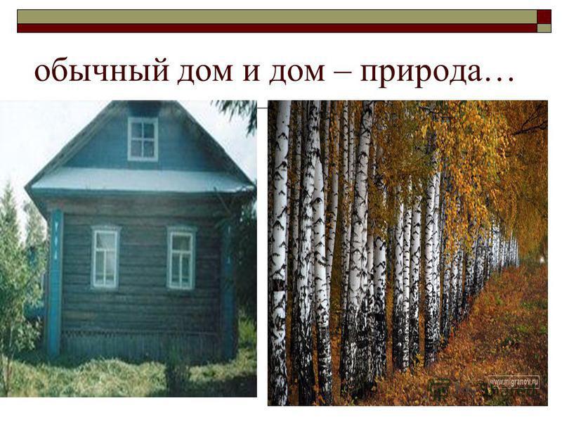 обычный дом и дом – природа…