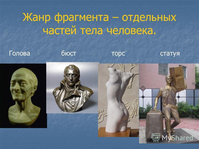 Жанр фрагмента – отдельных частей тела человека. Голова бюст торс статуя