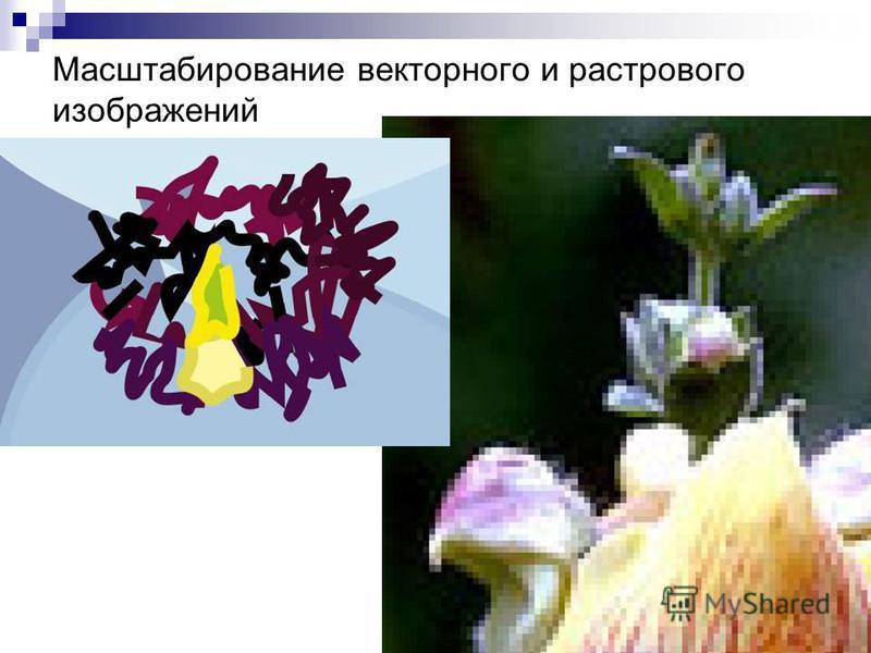 Масштабирование векторного и растрового изображений