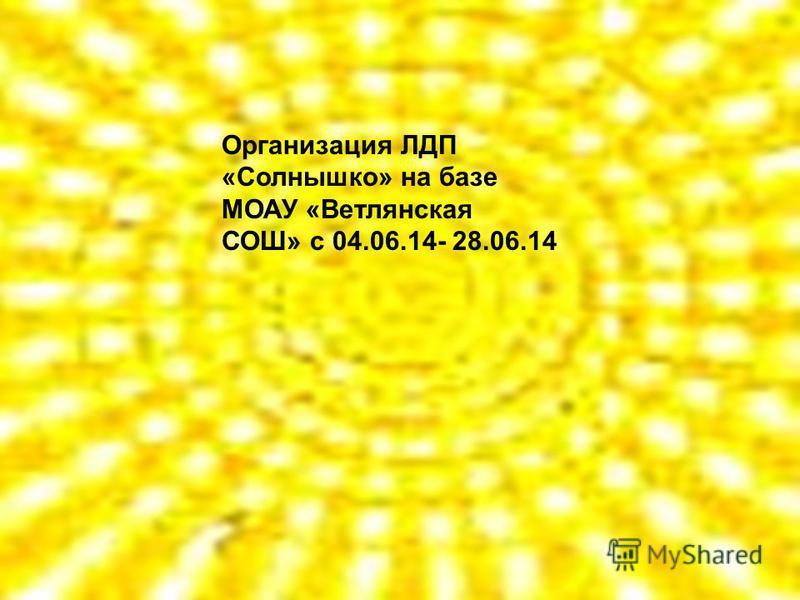 Организация ЛДП «Солнышко» на базе МОАУ «Ветлянская СОШ» с 04.06.14- 28.06.14
