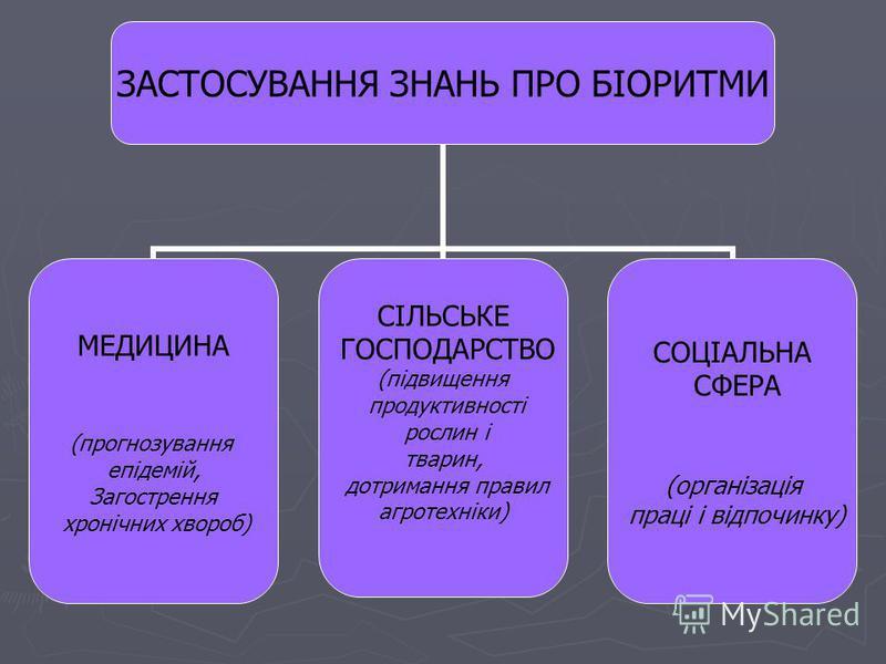 ЗАСТОСУВАННЯ ЗНАНЬ ПРО БІОРИТМИ МЕДИЦИНА (прогнозування епідемій, Загострення хронічних хвороб) СІЛЬСЬКЕ ГОСПОДАРСТВО (підвищення продуктивності рослин і тварин, дотримання правил агротехніки) СОЦІАЛЬНА СФЕРА (організація праці і відпочинку)