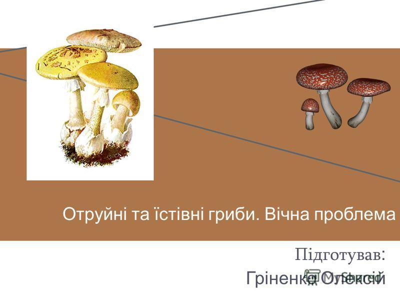 Отруйні та їстівні гриби. Вічна проблема Підготував : Гріненко Олексій
